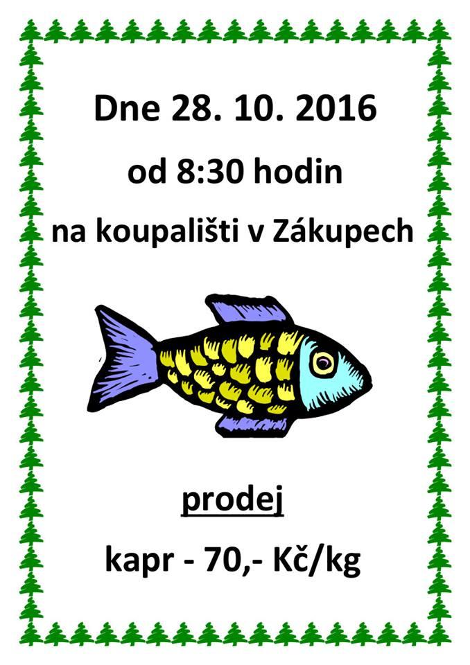 vylov-28-10-2016